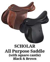 Scholar All Purpose Saddle with Square Cantle