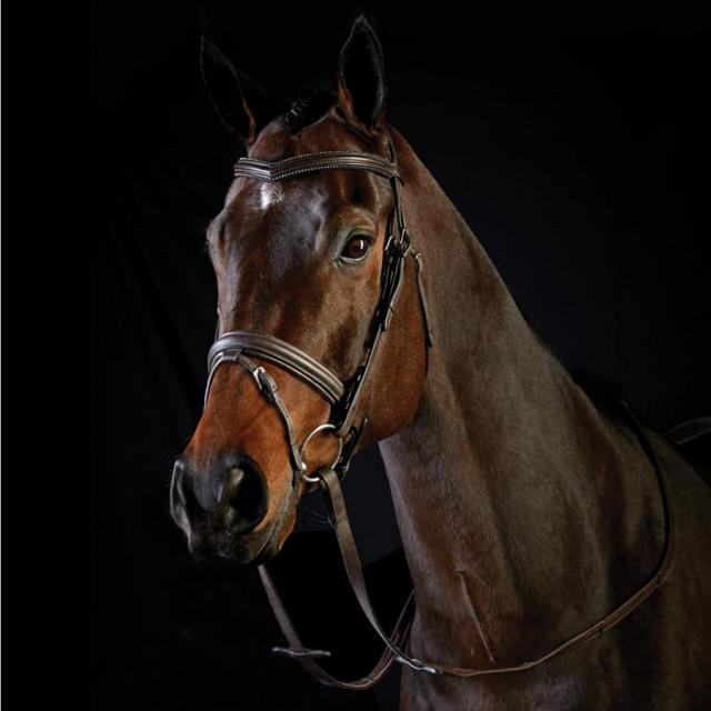 Collegiate Crystal Padded Crank Hanoverian Bridle Brown