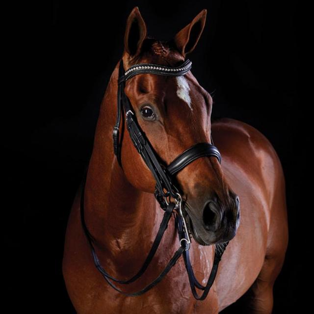 Collegiate Shaped Crystal Crank Weymouth Bridle Black