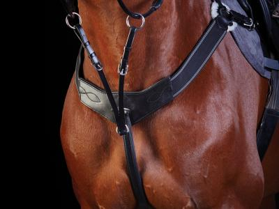 Collegiate 3 Point Breastplate Black