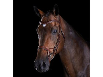 Collegiate ComFiTec Training Bridle Brown