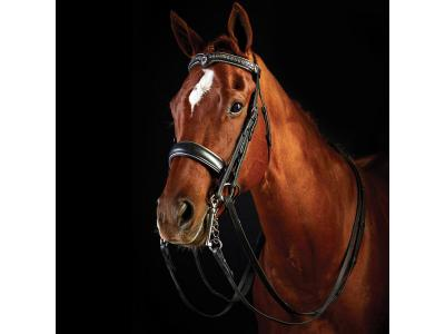 Collegiate Dressage Weymouth Bridle Black/Clear