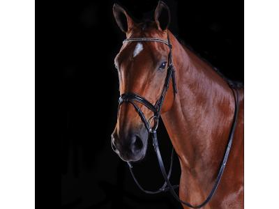 Collegiate Multi Crystal Crank Flash Bridle Black