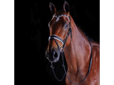 Collegiate Deep V Pearl Flash Bridle Black