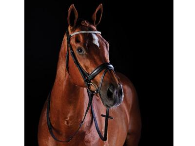 Collegiate Shaped Crystal Hanoverian Bridle Black