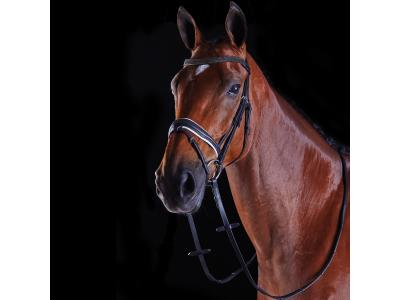 Collegiate Triple Crystal Crank Flash Bridle Black