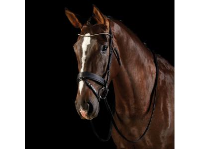 Collegiate U Shaped Diamante Bridle with Wide Noseband Black