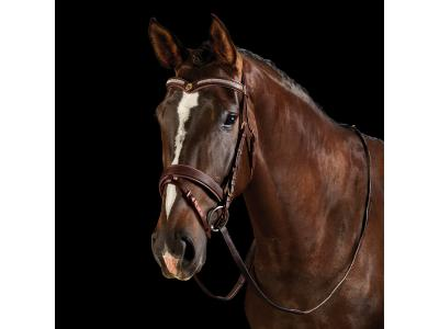 Collegiate V Shaped Diamante Bridle Brown/Tan